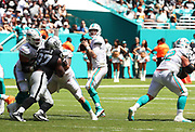 Sep 23, 2018; Miami Gardens, FL, USA; Miami Dolphins quarterback Ryan Tannehill (17) throws a pass at Hard Rock Stadium against the Oakland Raiders. The Dolphins defeated the Raiders 28-20. (Steve Jacobson/Image of Sport)