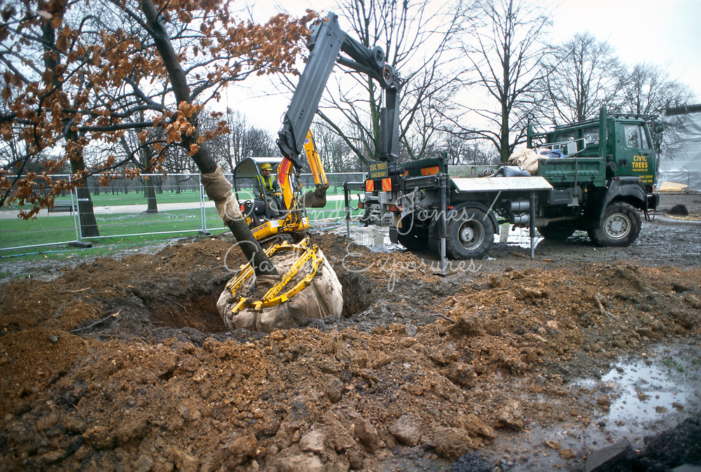 Mechanically planting a medium sized tree <br /> <br /> <br /> Princess of Wales Memorial Garden, Kensington Gardens, London, England