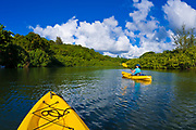 Woman kayaking on the Hanalei River, Island of Kauai, Hawaii USA