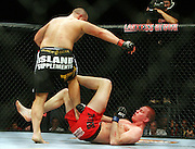 Stefan Struve (NED) gets kicked in the groin as he beats Dennis Stojnic.Cologne, Germany, Ultimate Fighting Championship.