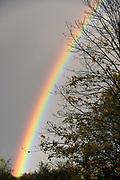 Nederland, Ubbergen, 13-11-2017Deze middag liet zich een mooie en heldere regenboog zien. Kleuren van de regenboog.Foto: Flip Franssen