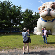 August 16, 2014, New Haven, CT:<br /> A fan poses for a photograph in front of an inflatable Yale Bulldog during Kids Day on day three of the 2014 Connecticut Open at the Yale University Tennis Center in New Haven, Connecticut Sunday, August 17, 2014.<br /> (Photo by Billie Weiss/Connecticut Open)
