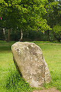 Derbyshire, UK – June 03 2016: Close up on one sarcen or standing stone of Nine Ladies Stone Circle, a Bronze age monument on Stanton Moor