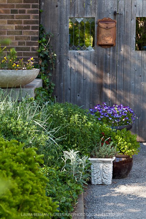 flowers, perennials and shrubs in containers and planters in a frontyard garden.