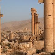 Shadows and columns at Roman ruins of Palmyra, Syria