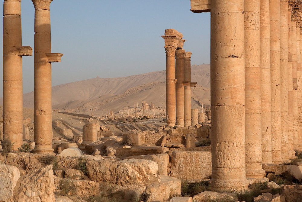 Shadows and columns at Roman ruins of Palmyra, Syria