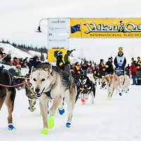 2013 Yukon Quest Favorites
