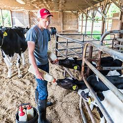 Jacob Scruton bottle feeds young calves (Holsteins) at the Scruton dairy farm in Farmington, New Hampshire.