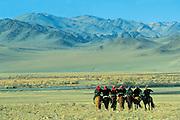Kazakhs leaving Festival with their Golden Eagles<br />Aquila chrysaetos<br />Western Mongolia