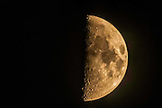 First Quarter Moon with golden light on it and a black background