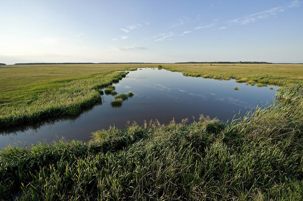 Typical Hortobagy landscape with saline lake, Hortobagy National Park, Hungary