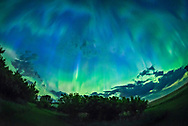 The great all-sky aurora of the night of May 27/28, 2017, shot from home in southern Alberta looking north toward the auroral oval. The brightest curtain is fringed with pink from glowing nitrogen. Above, the aurora is exhibiting a typical post-substorm patchiness and pulsating, with patches of green ad blue covering the sky. With the oncoming morning twilight, the sky and aurora is beginning to look more blue. The Big Dipper is at left. Notice the sharp-edged dark bands at upper right. Dark aurora?<br />