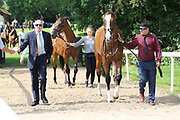 The horses for the first race leave the stables for the racecourse during the Ebor Festival at York Racecourse, York, United Kingdom on 23 August 2019.
