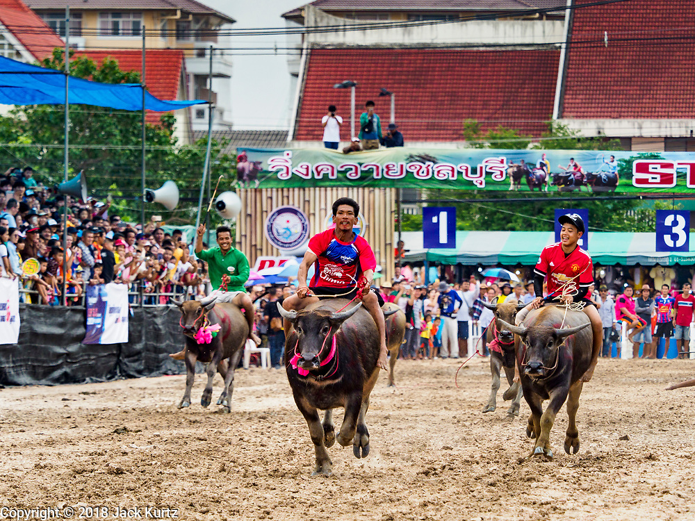 23 OCTOBER 2018 - CHONBURI, CHONBURI, THAILAND: A water buffalo race in Chonburi. Contestants race water buffalo about 100 meters down a muddy straight away. The buffalo races in Chonburi first took place in 1912 for Thai King Rama VI. Now the races have evolved into a festival that marks the end of Buddhist Lent and is held on the first full moon of the 11th lunar month (either October or November). Thousands of people come to Chonburi, about 90 minutes from Bangkok, for the races and carnival midway.   PHOTO BY JACK KURTZ