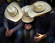 Young cowboys watch rodeo videos on an iPhone during a break in the Falkland Stampede in Falkland, B.C. (2017)