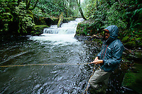 Fly fishing small stream on the Oregon coast.