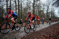 Floortje Mackaij (NED) across the cobbles at Ronde van Drenthe 2019, a 165.7 km road race from Zuidwolde to Hoogeveen, Netherlands on March 17, 2019. Photo by Sean Robinson/velofocus.com