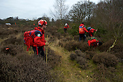 Cavenham, Suffolk. Members of the Suffolk Lowland Search and Rescue (SULSAR) performing a through search of Cavenham Heath in the fourth search for the missing RAF serviceman Corrie McKeague. <br /> <br /> Picture: MARK BULLIMORE