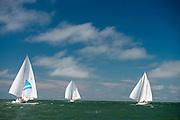 Santana, Dorade, and Vagabundo II sailing in the Opera House Cup regatta.