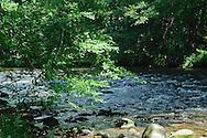 Mountain stream at Mountain Farm Museum, Oconaluftee, N.C.
