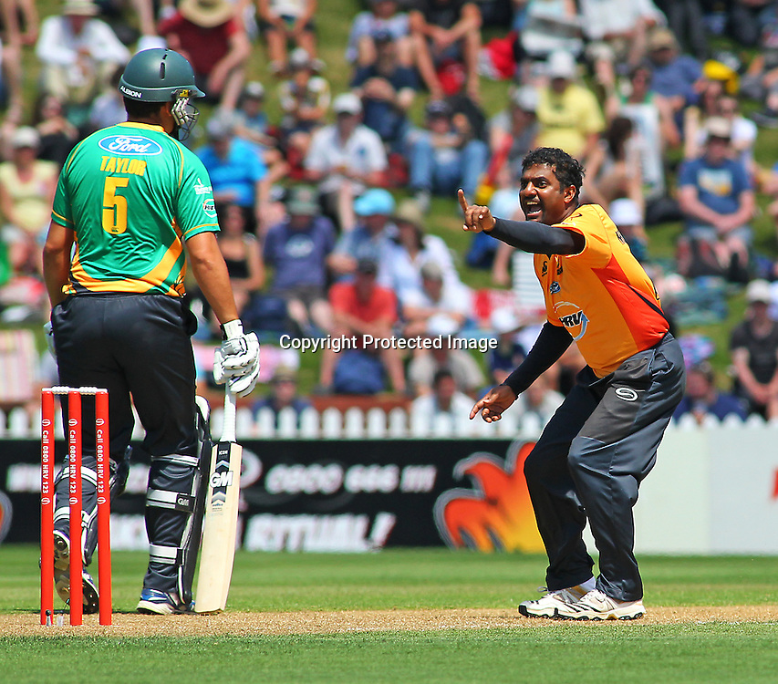 Muttiah Muralidharan successfully appeals a wicket during their Twenty20 Cricket match - HRV Cup, Wellington Firebirds v Central Stags, 27 December 2011, Hawkins Basin Reserve, Wellington. . PHOTO: Grant Down / photosport.co.nz