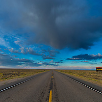 A dead Sage-Grouse lays on an infamous Wyoming Highway 28 connects between Farson and Seedskadee National Wildlife Refuge in Wyoming.
