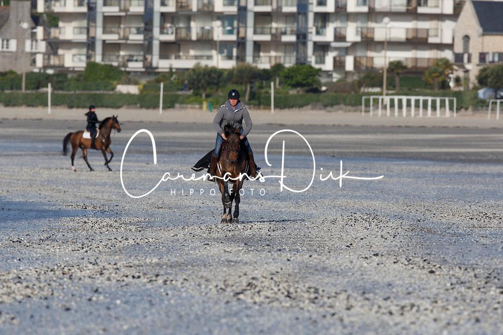 Wild Thing L with his groom on the beach<br /> Winner of the Derby Laiterie de Montage - Region Pays de La Loire<br /> Longines Jumping International de La Baule 2015<br /> © Hippo Foto - Dirk Caremans<br /> 16/05/15