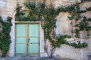 A door is framed by roses in the village of Montforte d'Alba, in the Piedmonte region of Italy.