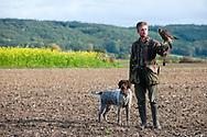 Falconer Vladimir Garaj trains a young Peregrine Falcon (Falco peregrinus) in fields near Rosenburg, Walviertel region, Lower Austria © Rudolf Abraham