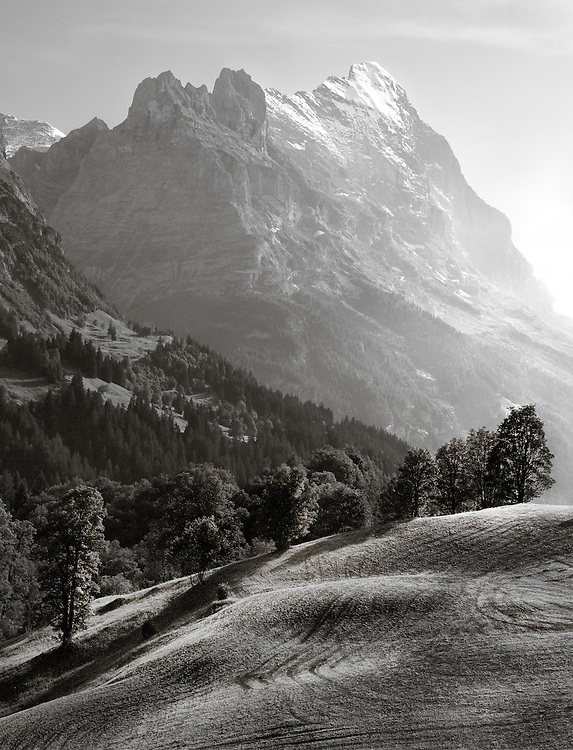 Switzerland - Eiger view from Scheidegg