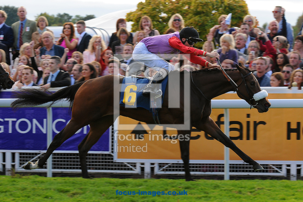 Kinematic and jockey David Probert win The Controlled Solutions Group Nursery Handicap at Chester Racecourse , Chester<br /> Picture by Alan Wright/Focus Images Ltd 07733 196489<br /> 27/09/2014