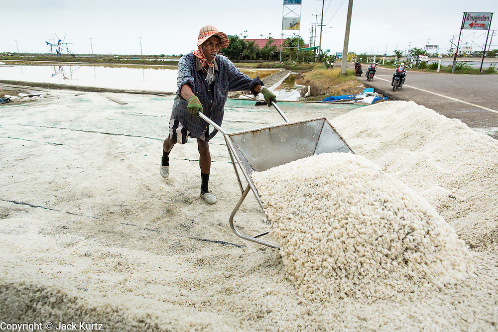 24 APRIL 2013 - SAMUT SONGKHRAM, SAMUT SONGKHRAM, THAILAND: A worker dumps salt from a wheelbarrow into an area where it is bagged and weighed before sale during the salt harvest in Samut Songkhram, Thailand. The 2013 salt harvest in Thailand and Cambodia has been impacted by unseasonably heavy rains. Normally, the salt fields are prepped for in December, January and February, when they're leveled and flooded with sea water. Salt is harvested from the fields from late February through May, as the water evaporates leaving salt behind. This year rains in December and January limited access to the fields and rain again in March and April has reduced the amount of salt available in the fields. Thai salt farmers are finishing the harvest as best they can, but the harvest in neighboring Cambodia ended 6 weeks early because of rain. Salt has traditionally been harvested in tidal basins along the coast southwest of Bangkok but industrial development in the area has reduced the amount of land available for commercial salt production and now salt is mainly harvested in a small part of Samut Songkhram province.      PHOTO BY JACK KURTZ