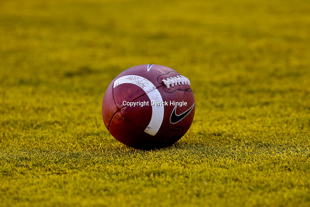 October 16, 2010; Baton Rouge, LA, USA; A football is seen on the field in the end zone during a game between the LSU Tigers and the McNeese State Cowboys at Tiger Stadium. LSU defeated McNeese State 32-10. Mandatory Credit: Derick E. Hingle