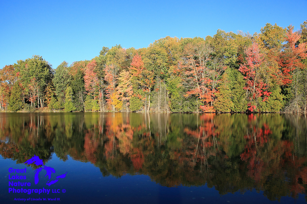Beautiful view of the serene ponds along the Manistee River at Glengary, north of Mesick, Michigan.