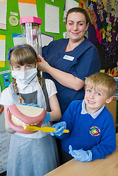 Oasis Dental Nurse Kate Dewey with Daniel and Amber demonstrate the correct way to clean teeth during the Oasis  oral hygiene session at Hunloke Park Primary School on Tuesday 20 October 2015<br />  Image © Paul David Drabble <br />  www.pauldaviddrabble.co.uk