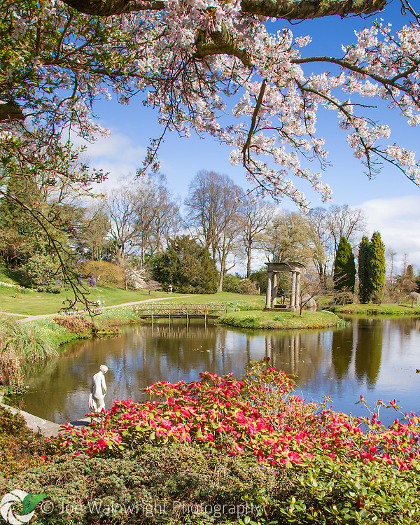 Spring in the Temple Garden at Cholmondeley Castle, Cheshire