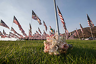 Flowers are placed amongst 3,000 US flags are displayed at Pepperdine University to mark the 12th anniversary of the 9/11 terror attack, September 10, 2013 in Malibu, California. Photo by Ringo Chiu/PHOTOFORMULA.com)