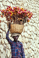 Man with basket on head, Haiti