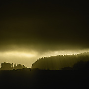 """I can never forget the amazing lighting on this morning when I was heading out of Tenakee Inlet with some guests aboard my boat """"Selena"""" to take them to see humpback whales bubble net feeding at Point Hayes to the south down Chatham Strait. It was my birthday and I had a very unique and unexpected birthday present. We were motoring down Chatham Strait when I spotted an unusual shape bobbing on the surface: almost like the shape of ice cream sitting in a cone. When I looked through my binoculars I could hardly believe my eyes because I instantly recognised it as being a big bull northern elephant seal (Mirounga angustirostris) on the surface with its unmistakeable big proboscis drooping from its head. I had no idea that they ventured that far north, and after consulting with some local fisherman I was informed that it was indeed a very rare occurrence."""
