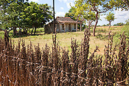 Farm house and fence near Las Martinas, Pinar del Rio, Cuba.