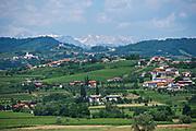 Italy, Collio. View towards the Alps.