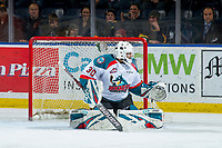 KELOWNA, CANADA - JANUARY 30: Roman Basran #30 of the Kelowna Rockets defends the net against the Seattle Thunderbirds  on January 30, 2019 at Prospera Place in Kelowna, British Columbia, Canada.  (Photo by Marissa Baecker/Shoot the Breeze)