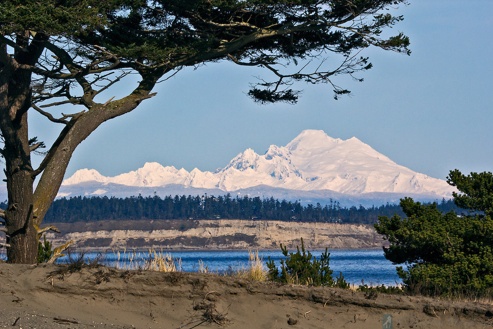 Mount baker framed by a tree at Fort Worden, Port Townsend, Washington