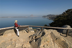 California, San Luis Obispo County: Morro Bay State Park, with Morro Rock, artists painting Morro Rock, rangers leading walks, and a heron rookery. Model released..Photo caluis168-71190..Photo copyright Lee Foster, www.fostertravel.com, 510-549-2202, lee@fostertravel.com