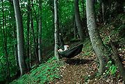 A hiker enjoys a peaceful moment in a hammock, Herculane Spa, Romania.