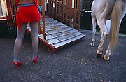 A model from the Alion Couture fashion house takes part in a street parade with horses for the benefit of the media in Kensington, central London UK. We see the lower section of a horse ramp and another horse is in the background. Seen from a low angle, both the horses hoof and her foot in red high heel shoes appear to be askew in a postural echo, when two mannerisms or body language are similar.  The light is blue because of the shadow both subjects are in but her shoes and matching short red dress appear vibrant in saturation and hue.