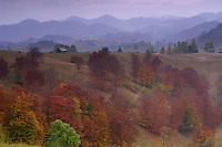 Cultural landscape, Sirnea, Transylvania, Southern Carpathians, Romania