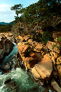 MEXICO, PACIFIC COAST, JALISCO STATE Puerto Vallarta, Chico's Paradise 20K S of Puerto Vallarta; area of lush jungle foliage and waterfalls