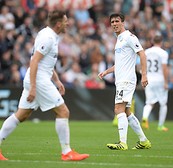 Jack Cork of Swansea City exchanges frustrated words with Angel Rangel of Swansea City - Mandatory by-line: Alex James/JMP - 24/09/2016 - FOOTBALL - Liberty Stadium - Swansea, England - Swansea City v Manchester City - Premier League