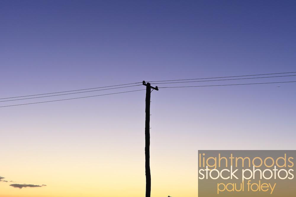 Power Pole and wires against a dusk sky, Australia